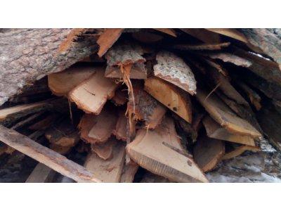 odkory dřevěné 2bm DUB - dub1.jpg