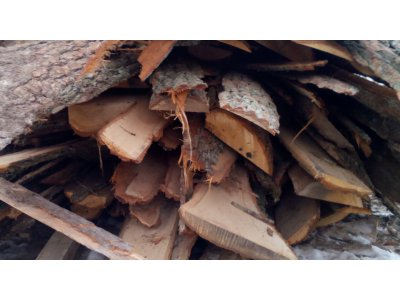 dřevěné odkory 4bm DUB - dub1.jpg